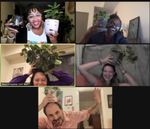 Screenshot of SJFs Development team goofing off on zoom while holding houseplants on their heads
